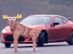 Toyota GT86 klarer ikke elg-testen